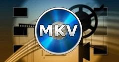 MakeMKV 1.16.7 Crack + Registration Code Free Download