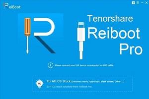 Tenorshare ReiBoot Pro 8.1.2.1 Crack + Registration Code Download 2022